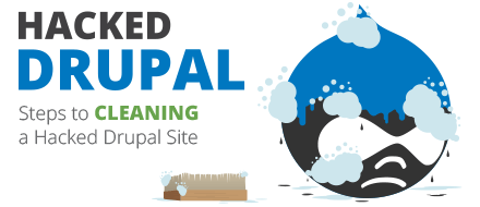 Infographic - Drupal Guide